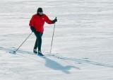 Cross-country Skiier 05214