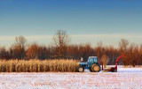 Tractor In A Field 03938