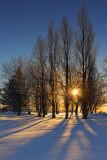Sunrise Shadows 20110203