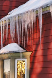 Icicles 05775
