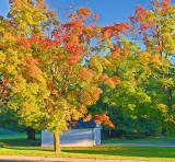 Early Autumn Color 20120923