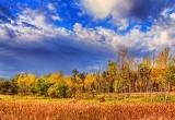 Autumn Landscape 28209-10