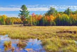 Autumn Landscape 28328-9