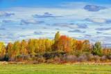 Autumn Landscape 20121001