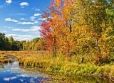 Autumn Landscape 28342