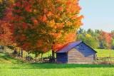 Autumn Barn 20121004
