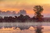 Sunrise Mist 28726-8