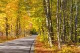 Cove Road In Autumn 29550