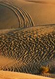 Imperial Sand Dunes 26565