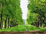 Green Park Art