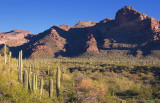 Alamo Canyon 83219
