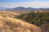 Desert Grasslands 86403
