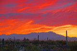 Desert Sunset 20080315