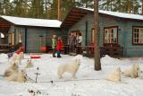 carsten and lottes cabin and dogs.jpg