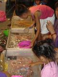Haiduan Harvest Festival (5).JPG