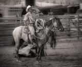It's Time fer Ropin'