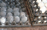 Eggs covered with ashes.