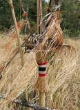 Magic pole with red paint at the bamboo fibres. Phnong village Pu Lang II,  Modulkiri, Cambodia