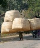 transport of baskets