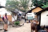 India tribal Orissa, Ulari Gadaba tribe