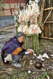 Myoko. Sacrifice of chickens and eggs. Apatani tribe