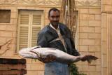 Il est beau mon poisson !
