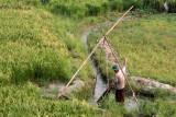 Irrigation des champs