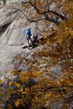 Au rocher d'escalade