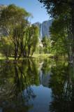 Yosemite Falls Early Morning Reflection
