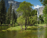 Yosemite Falls Afternoon Reflections