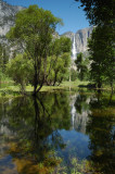 Yosemite Falls Afternoon Reflection