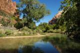 Virgin River Reflections, Zion NP