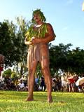 2009 Island Fair