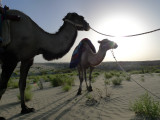 Taklaman Desert9.jpg