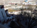 lhasa4.jpg
