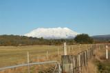 Tongariro Mountain