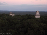 View of temples III, II, and I from atop Temple IV at sunset