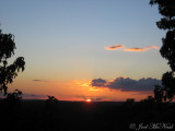 View of sunset over jungle from atop Temple IV