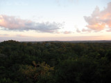 View of jungle canopy from Temple IV at sunset
