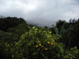 view from hotel Camino Verde