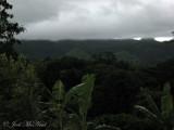 Roadside view in Chiapas