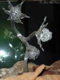 glass sculpture of Lacandonia schismatica