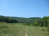 Mountainside pasture