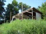 Hay shed in progress