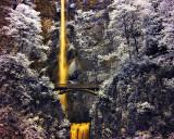 Multnomah Falls in IR