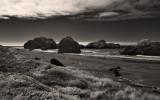 Rocks at Myers Creek Beach (IR)