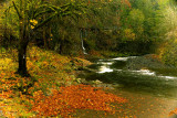 Autumn Along The Water Fall