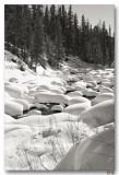 2-28-8 Snow Tufts