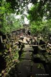 Beng Mealea, Cambodia D700_18535 copy.jpg