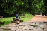 Beng Mealea, Cambodia D700b_00028 copy.jpg
